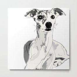 Greyhound Family Dog Metal Print