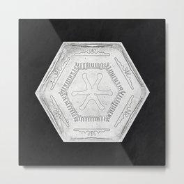 Wilson Bentleys Snowflake 1205 (ca 1890) detailed photograph of snowflakes in high resolution by Wil Metal Print