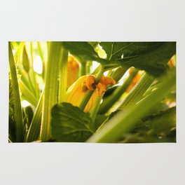 Zuchini Blossom Photography Print Rug