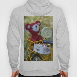 Toys - A cool sunset Hoody