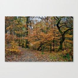 Roddy Woods Canvas Print