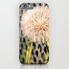 Oversized Puff - Ready to break apart and fly away. Slim Case iPhone 6s