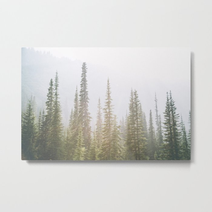 Forest XXVII Metal Print