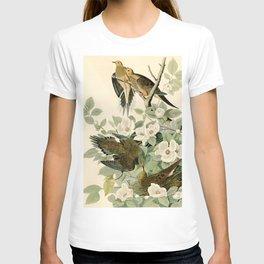 Carolina Turtle Dove (Zenaida macroura) T-shirt