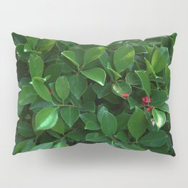 Green tropical foliage Pillow Sham