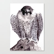 falcon 1 Canvas Print