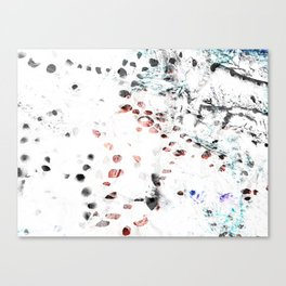 Winter Woes Canvas Print