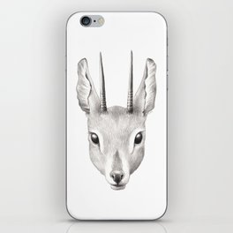 Antelope iPhone Skin