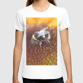 Bee is collecting nectar from the sunflower. T-shirt