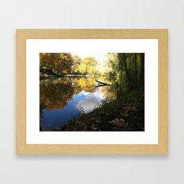 Vibrant Fall Framed Art Print