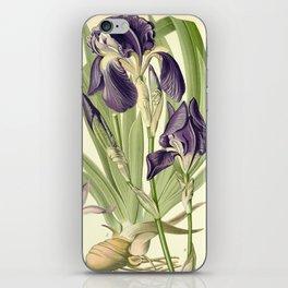 Purple Iris iPhone Skin