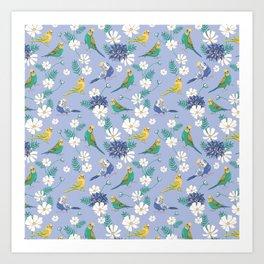 Budgies Pattern on Blue Art Print