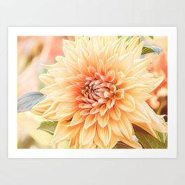 A Dalias Beauty Art Print