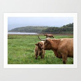 Highland Cow - Mother & Calf Art Print