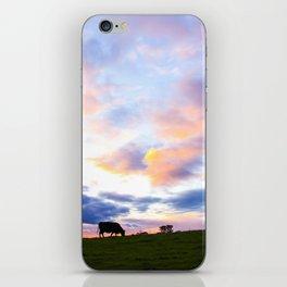 Sonoma County Sunset iPhone Skin