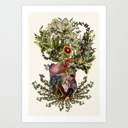 """""""indurare"""" anatomical heart collage by bedelgeuse Art Print"""