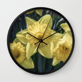 Spring time Daffodils Wall Clock