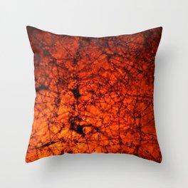 Cerium 2 Throw Pillow