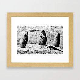 lunar landing II Framed Art Print