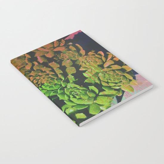 SuccuGlitch Notebook