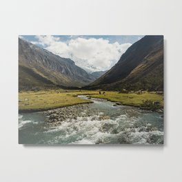 Green Valley with Cows and Horses Metal Print