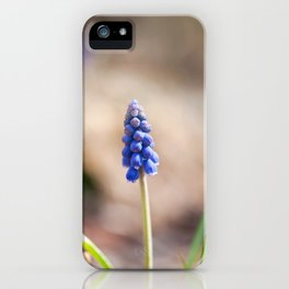 Blue Grape Hyacinth Buds iPhone Case