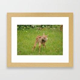 Cute Bambi 5 Framed Art Print