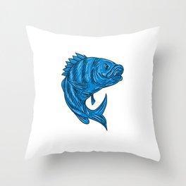 Sheepshead Fish Drawing Throw Pillow