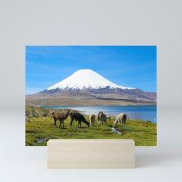 Chungara Lake, Chile Mini Art Print