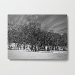 Tree Line in Snow Field Metal Print