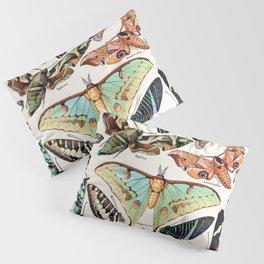 Adolphe Millot - Papillons pour tous - French vintage poster Pillow Sham