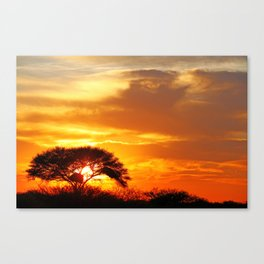 African sunrise Canvas Print
