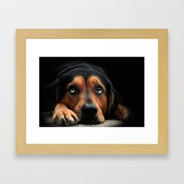 Puppy Dog Eyes Framed Art Print