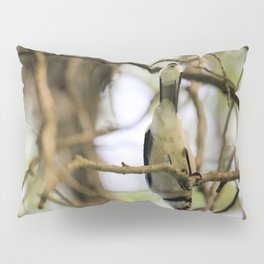 What's Up? Pillow Sham