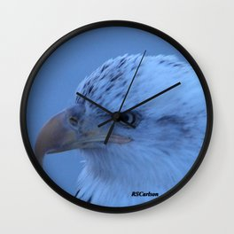 Young Eagle in Failing Light Wall Clock