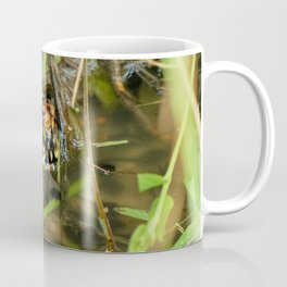 Box Turtle and Tadpoles Coffee Mug