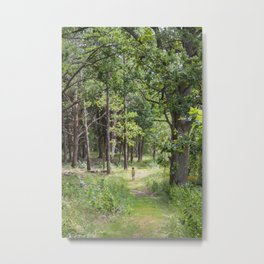 Alone in the wood Metal Print