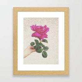Melrose Framed Art Print