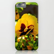 Viola tricolor iPhone 6s Slim Case