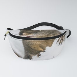 Winter Squirrel III -  Cute Wildlife Animals Nature Photography Fanny Pack