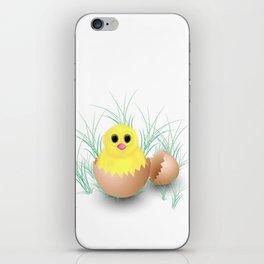 Chicken, chick, peeper, yellow chicken, egg shell, egg, shell, Easter, Easter chicken iPhone Skin