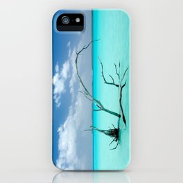 Driftwood in Lagoon iPhone Case