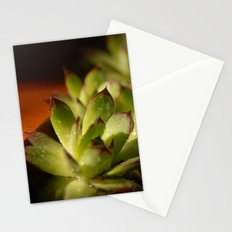Mother Hen & Chicks Stationery Cards