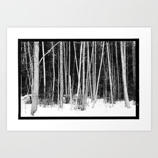 Norwegian forest VIII Art Print