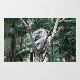 Snoozing Koala Rug