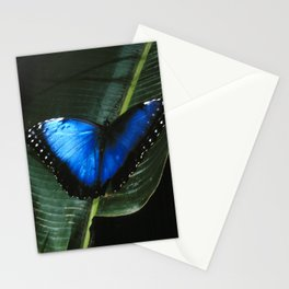 Costa Rican Blue Morpho Butterfly Stationery Cards