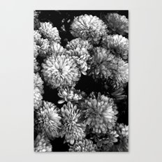 white gold (w/straight border) Canvas Print