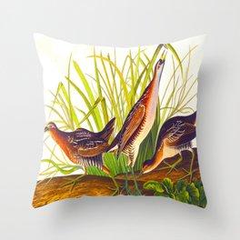 Sora, or Rail Bird Throw Pillow
