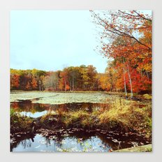 Beaver Pond Canvas Print