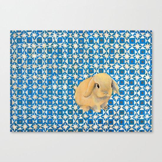 Charlie the Rabbit Canvas Print